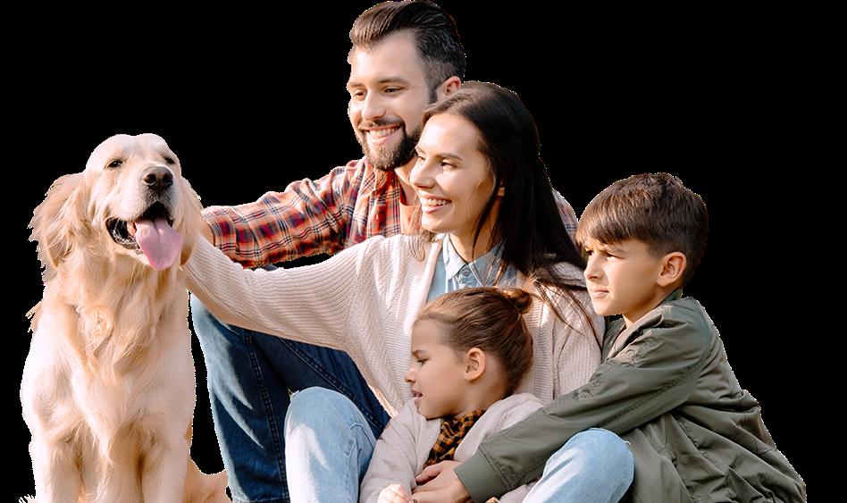 Богатство семьи. Управление семьей и силами рода